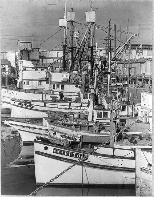 Japanese fishing boats, port of San Pedro, 1942. Heigoro's tuna boat, the Fortuna, was similar to these. Credit: Library of Congress